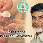 """Chandranna Pelli Kanuka""   Application Form   Online Apply  App download"