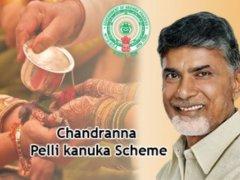 Chandranna Pelli kanuka Scheme