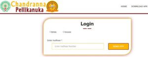 Chandranna Pelli kanuka Application Form