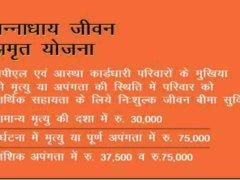 Rajasthan Panna Dhaay Jivan Yojana Form