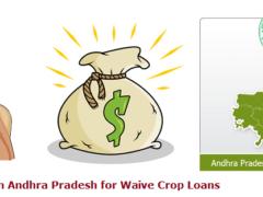 runa-mafi-loan-status-list